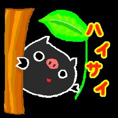 Okinawan Pig