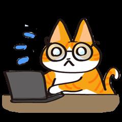 Glasses cat Tora