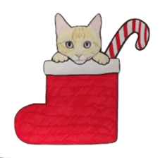Merry Christmas Cat sticker sticker #1286939