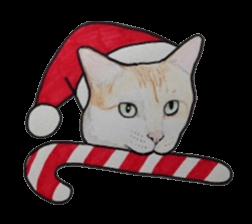 merry christmas cat sticker sticker 1286967 - Merry Christmas Cat