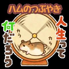 Boyaki of hamster