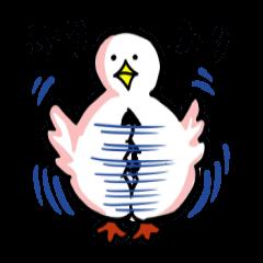 SHIRATORI duck