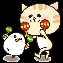 Kitten and Little bird