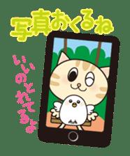 Kitten and Little bird sticker #1321262