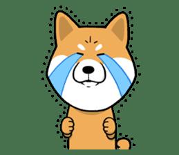 The Dogs - Shiba Inu 'Rui' sticker #1322241
