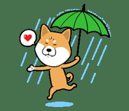 The Dogs - Shiba Inu 'Rui' sticker #1322245