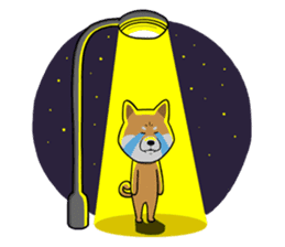 The Dogs - Shiba Inu 'Rui' sticker #1322248