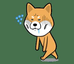 The Dogs - Shiba Inu 'Rui' sticker #1322253