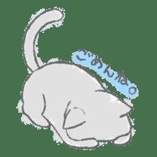 Graffiti animal of capybara and cat sticker #1323360
