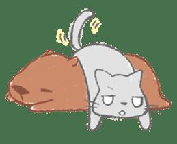 Graffiti animal of capybara and cat sticker #1323372