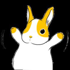 Winny Bunny