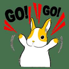 Winny Bunny sticker #1324715