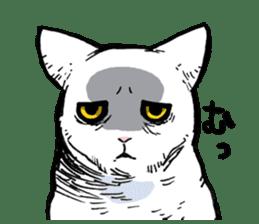 CATS!? sticker #1326187