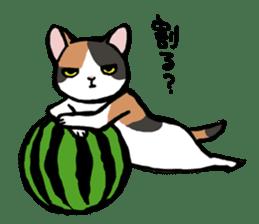 CATS!? sticker #1326193