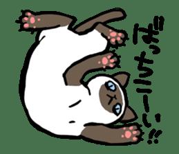 CATS!? sticker #1326200