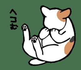 CATS!? sticker #1326203