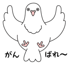 White dove sticker #1327909