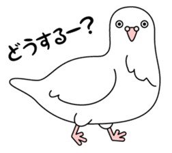 White dove sticker #1327937