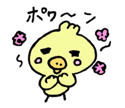 Chick of the pig nose sticker #1333164