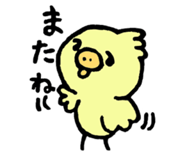 Chick of the pig nose sticker #1333167
