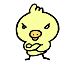 Chick of the pig nose sticker #1333176