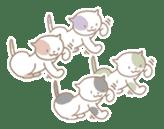 Taco's cat sticker #1340194