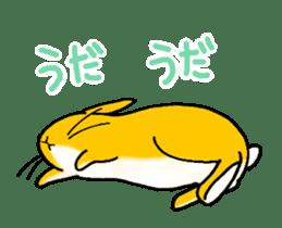 bunny! sticker #1347334