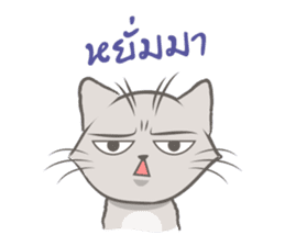 Mochi the cat sticker #1355365
