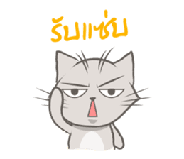 Mochi the cat sticker #1355375