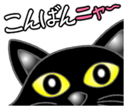 Black cat ROKU sticker #1357566
