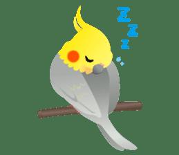 Lovely & Cute Cockatiels! sticker #1368050