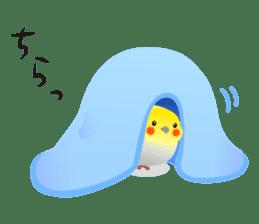 Lovely & Cute Cockatiels! sticker #1368052