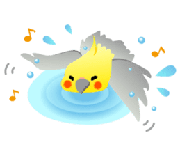 Lovely & Cute Cockatiels! sticker #1368054