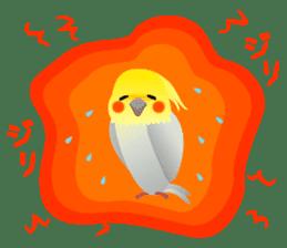 Lovely & Cute Cockatiels! sticker #1368056