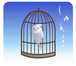 Lovely & Cute Cockatiels! sticker #1368059