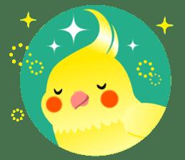 Lovely & Cute Cockatiels! sticker #1368064