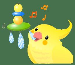 Lovely & Cute Cockatiels! sticker #1368070