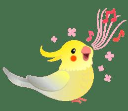 Lovely & Cute Cockatiels! sticker #1368071