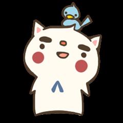 kouchan of a cat