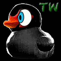 Taiwan Ginger Duck