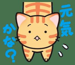Combination cat sticker #1384512