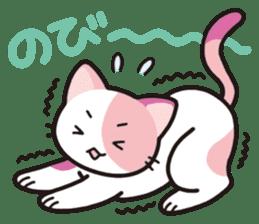 Combination cat sticker #1384538