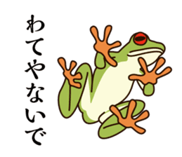 kansai KAERU sticker #1397098