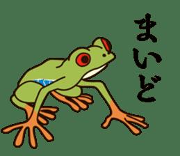 kansai KAERU sticker #1397117