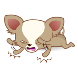 Lucky Chihuahua sticker #1398518