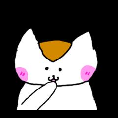 Mr queue of cat Japanese version