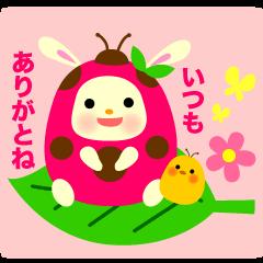 Pukki of ladybug rabbit No.2