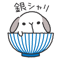 Lop Bunny, SHARIKICHI