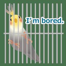 Love Birds sticker #1417069