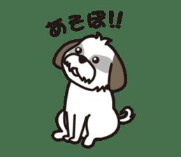 Pomeranian and Shihtzu sticker #1417362